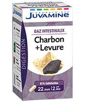 Juvamine Charbon + Levure