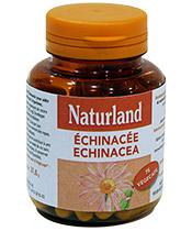 Naturland Echinacée