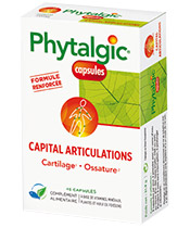 Phytalgic Capital Articulations