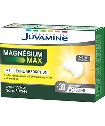 Juvamine Magnésium Max