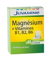 Juvamine Magnésium et Vitamines B1, B2, B6