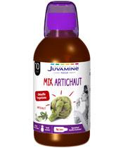 Juvamine Mix Artichaut