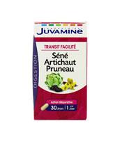 Juvamine Séné Artichaut Pruneau